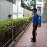 Herbal Pest control in Surat