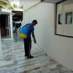 Residential Pest Control in Surat