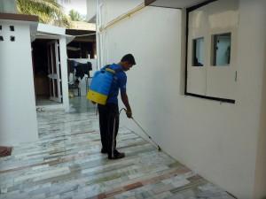 Residential Pest Control in Surat